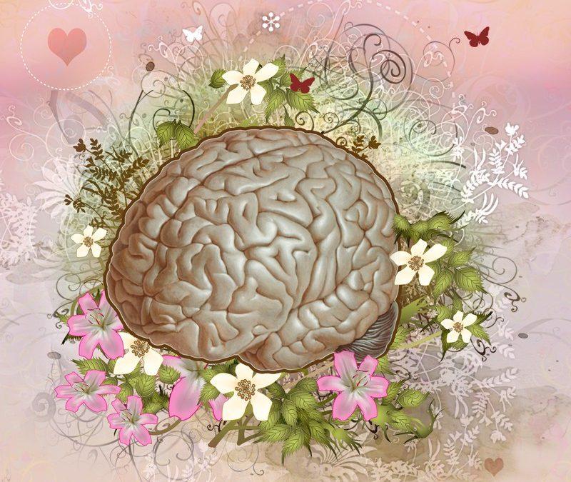 Al cerebro le encanta la grasa.