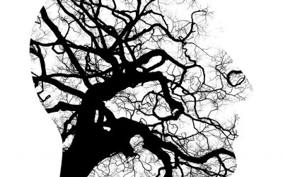 La infección por herpes aumenta el riesgo de alzhéimer, depresión y trastorno bipolar.