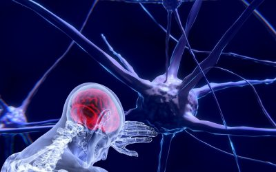 El diálogo entre las neuronas y los tumores