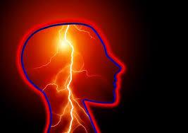 ¿Qué tipo de probióticos se pueden utilizar para la epilepsia?