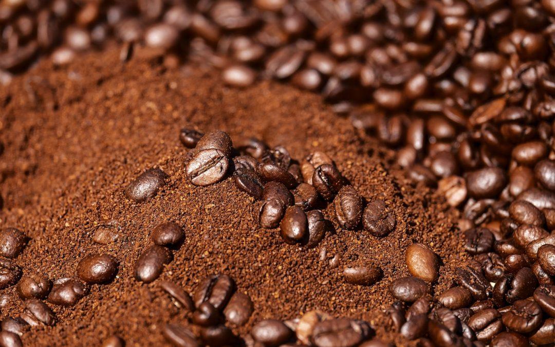 El ácido clorogénico del café mejora la memoria y la muerte neuronal tras una lesión cerebral