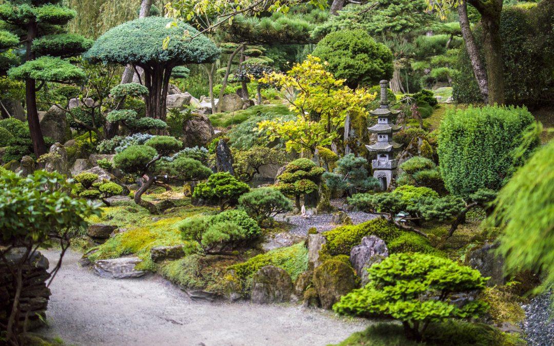 El efecto beneficioso de observar jardines japoneses para la demencia